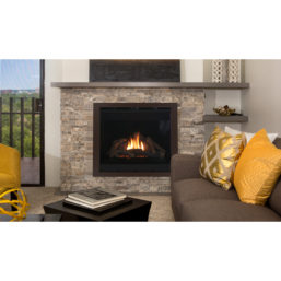 Astria GeminiC Room gas fireplace