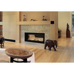 Savannah Bonaparte 48 See Thru Fireplace