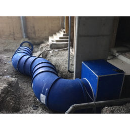 The Blue Duct